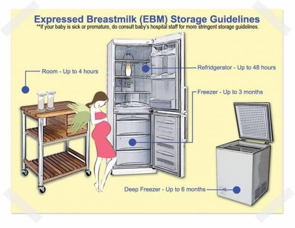 EBM guideline